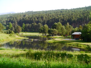 CONCOURS DE PÊCHE 14 JUILLET @ Lac de l'olive | Formiguères | Occitanie | France