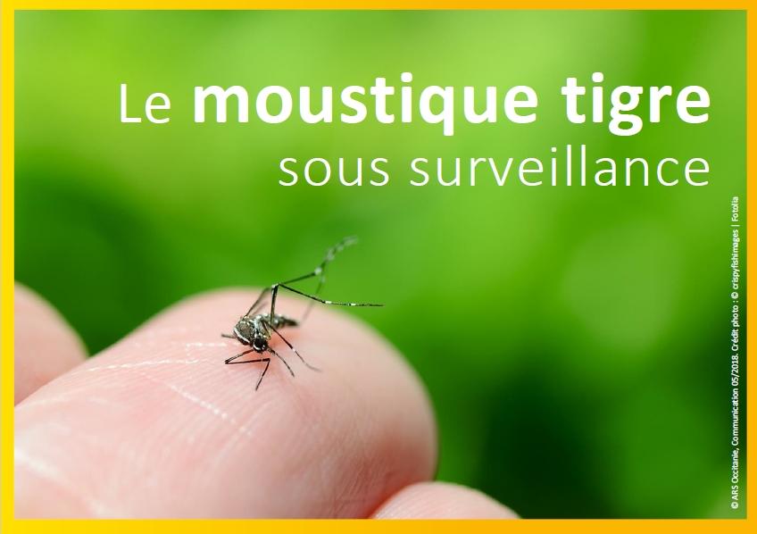 Campagne de surveillance du moustique tigre