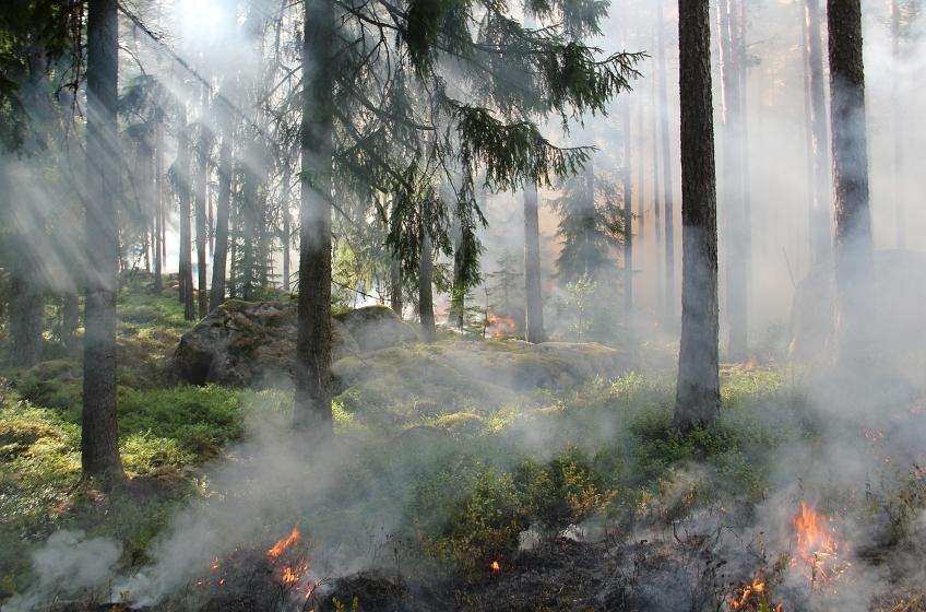 Prévention contre les incendies : rappel des règles et arrêté préfectoral
